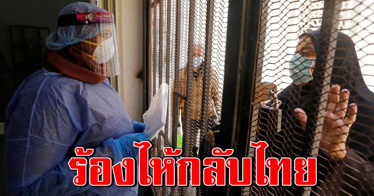 คนไทยในอียิปต์ ติดโควิด 38 ราย หมอให้แต่ยาพาราฯกิน ชีวิตสุดลำบาก อยากกลับบ้าน