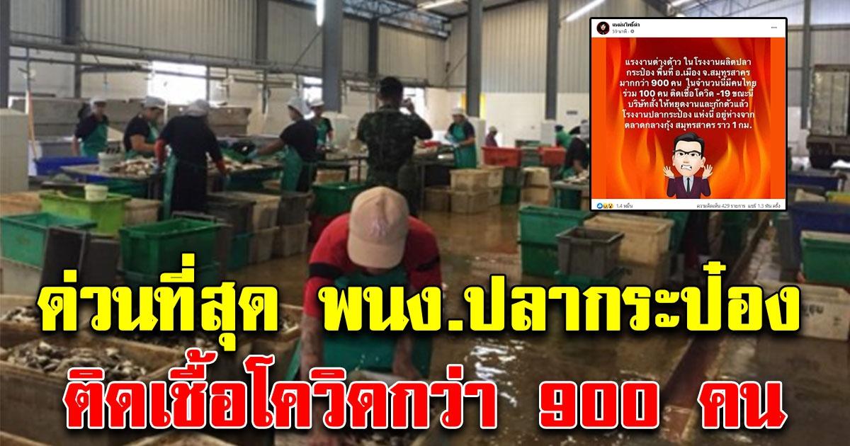 ด่วนที่สุด พนักงานโรงงานปลากระป๋องชื่อดัง ติด CV-19  รวม 900 คน