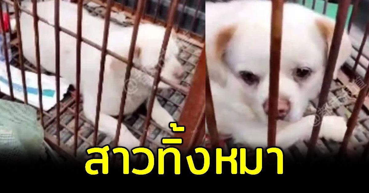 สาวเลือกทิ้งหมา เพราะไม่อยากจ่ายค่าปรับ ปล่อยหมาน้อยมองตาม แววตาเศร้า 58764j7
