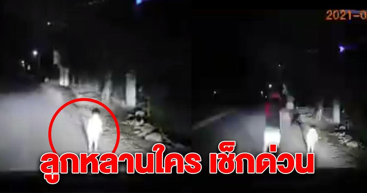 หนุ่มขับรถกลับบ้านตอนตี1 อยู่ๆพบเด็กยืนกลางถนน 59189pv